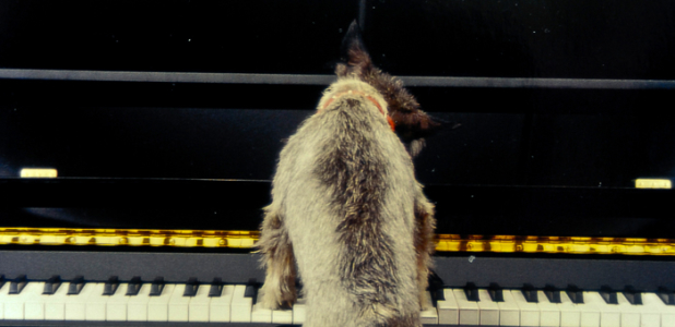 Musical Education